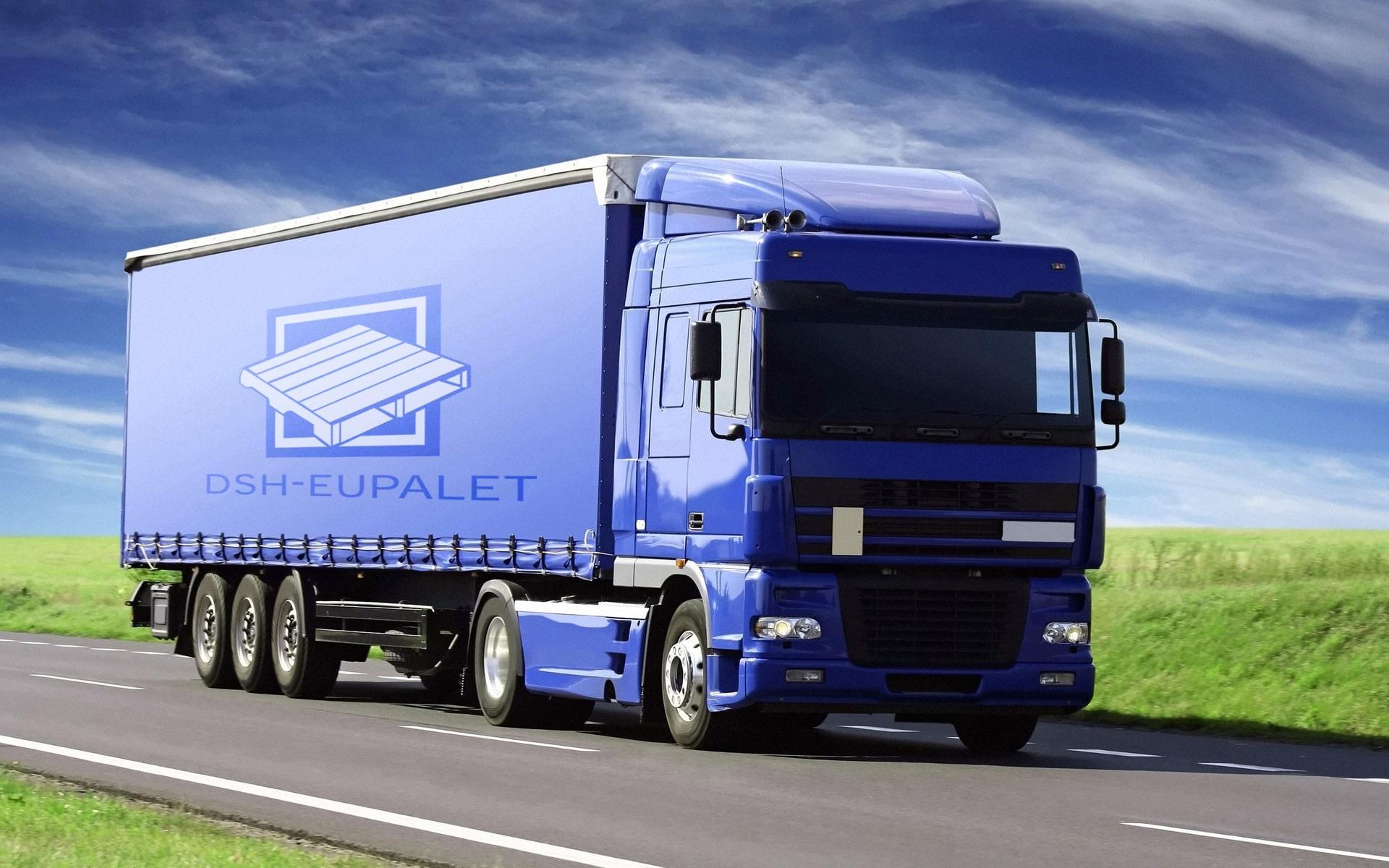 dsh-eupalet_transport